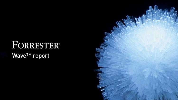 """Ein """"Leistungsstarken Anbieter"""", sagt das weltweit führende Forschungsunternehmen Forrester"""