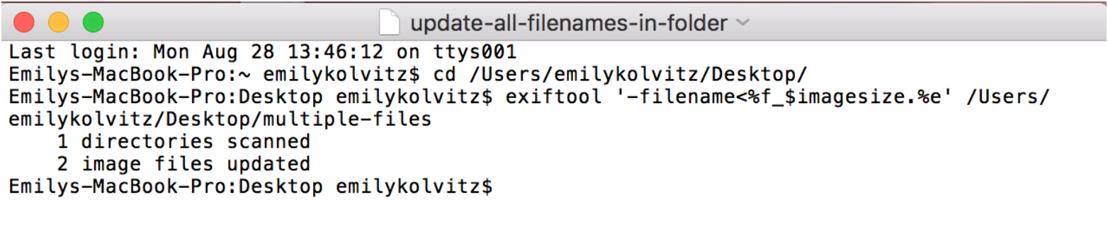 embedded-metadata-6.png